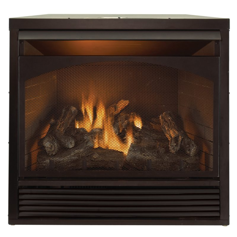 Ventless dual fuel blue flame garage heater 30 000 btu for Fireplace heater system