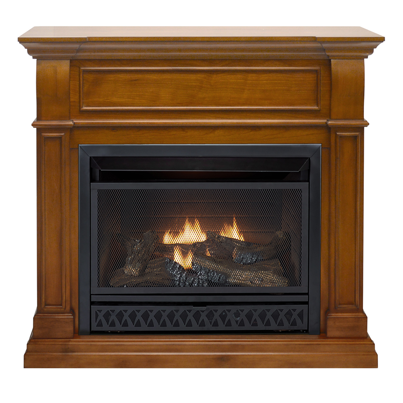 Ventless Fireplace: ProCom Ventless Fireplace Dual Fuel Fireplace, 26,000 BTU